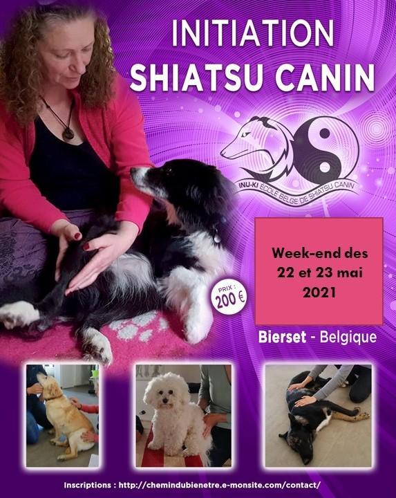 Shiatsu canin